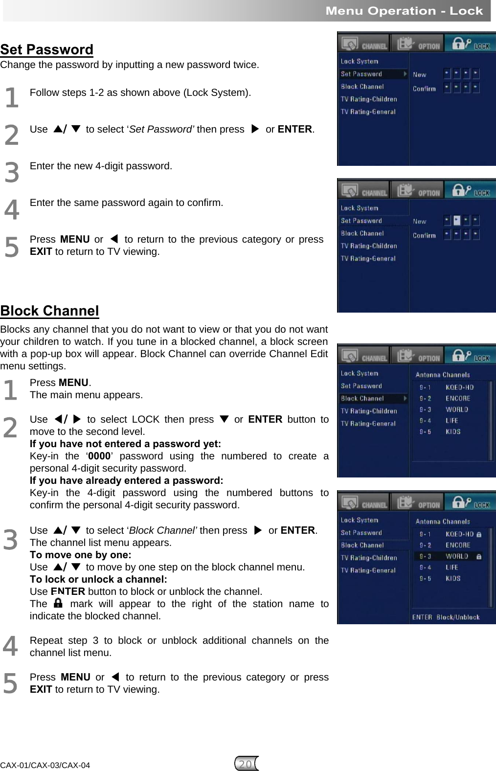 CAST Information CAX-03 Digital to Analog Converter Box User Manual