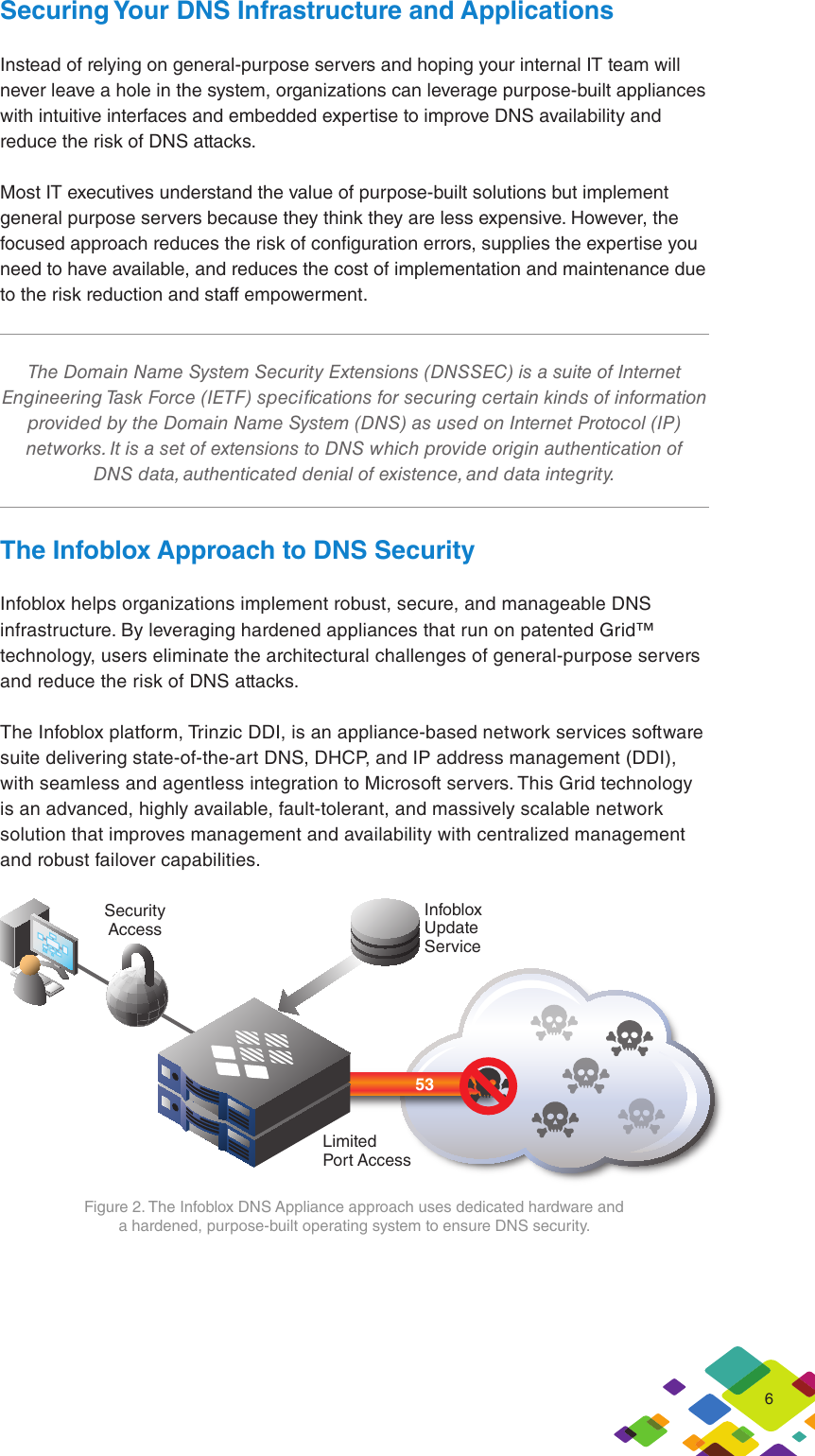Infoblox DNS Security Whitepaper