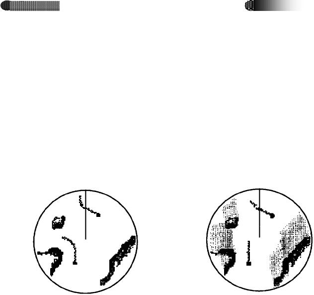 Furuno Radar Wiring Diagram
