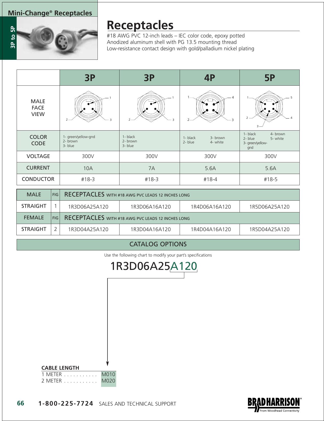 Brad Connectivity 2P FEMALE STRAIGHT 12/' 16//2 AWG Mini-C PVC CORD 102000A01F120