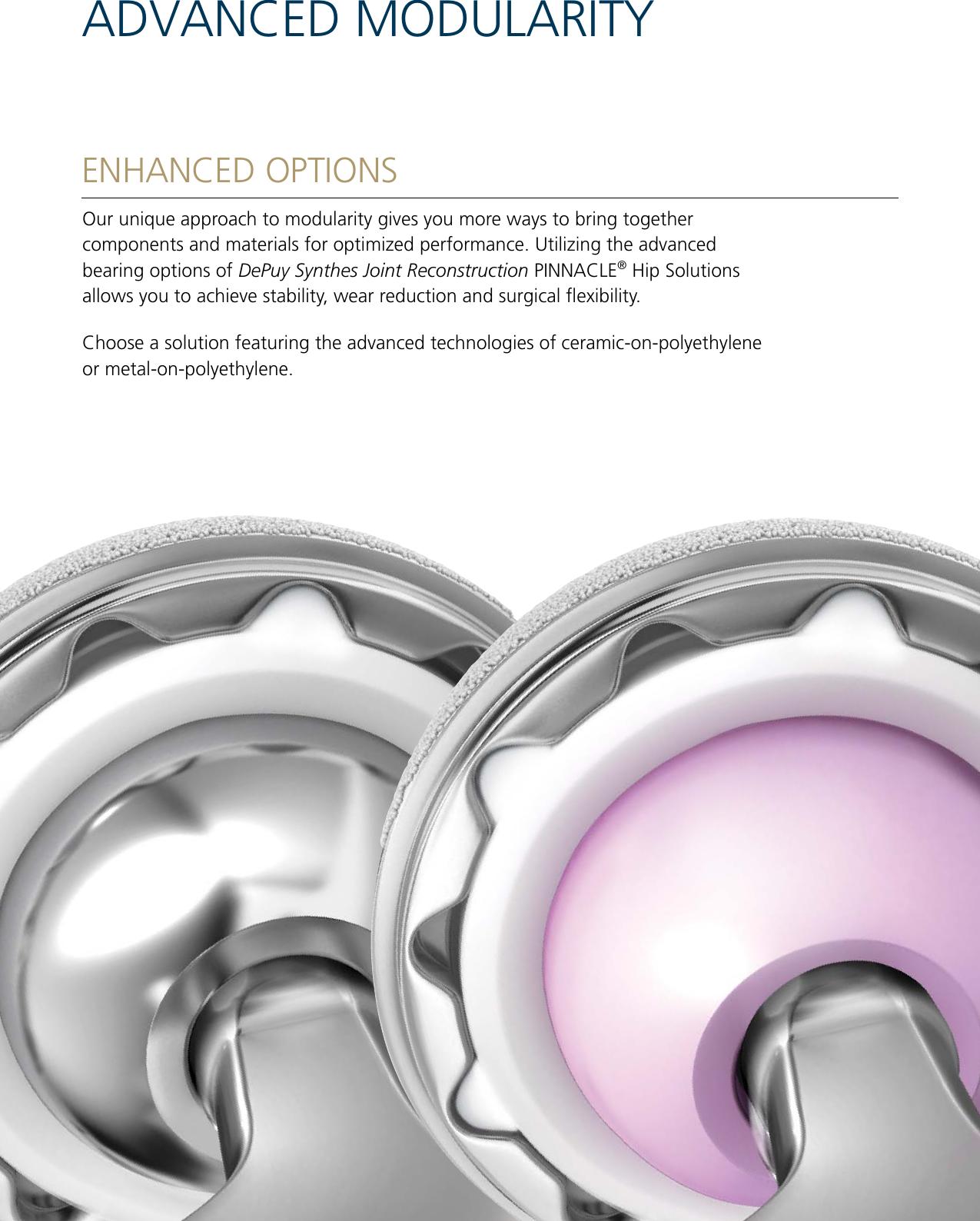 DPY Pinnacle Hip Solutions EO 12920pdf