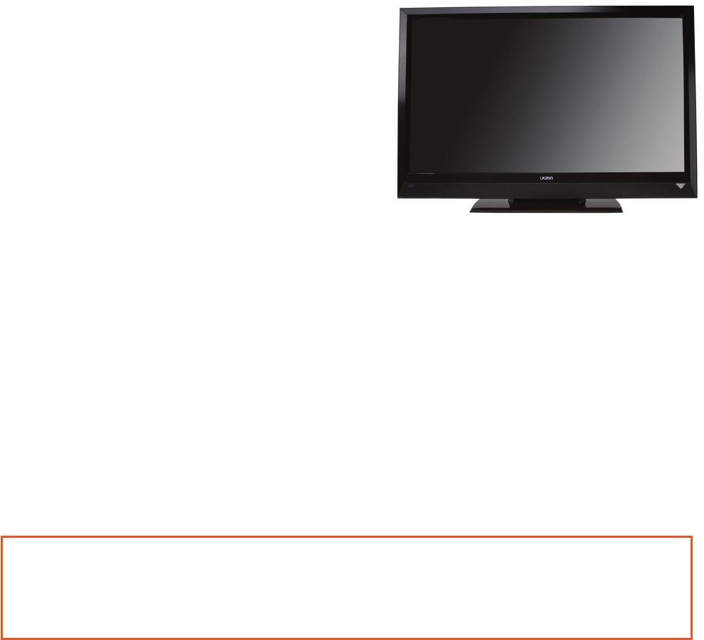 Vizio Flat Panel Television E421vl Users Manual 10 0110