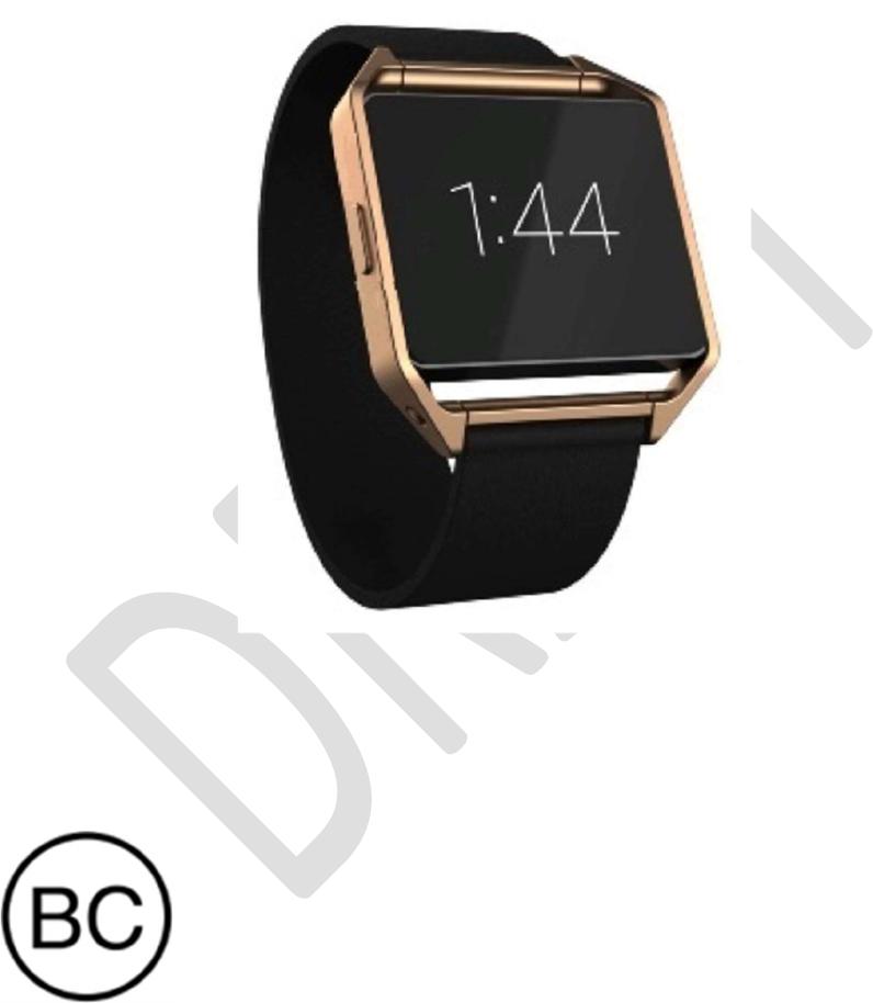 Fitbit FB503 Smart Watch User Manual Product Manual Draft